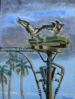Birds - Osprey Nest - Oil On Masonite
