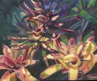 Botanicals - Bromeliad Choir - Oil On Canvas